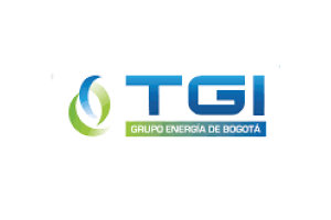 Transportadora de Gas Internacional